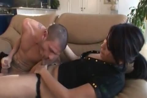 12848711 transsexual Babysitters 6